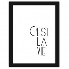 C'est la vie, Plakaty w ramie