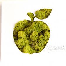dekor ścienny z mchem - jabłko