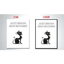 duży OBRAZ kot - CYTAT C45 i C45R - 70x50cm