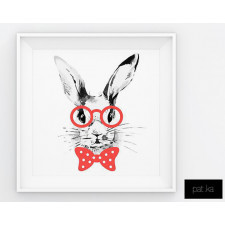 Plakat Rabbit 50 x 50