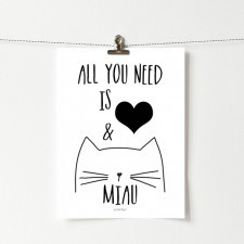 Plakat z napisem All you need is miau