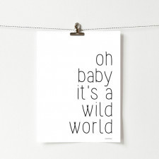 Plakat z napisem Wild world