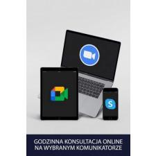 Godzina indywidualnej konsultacji online